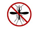 120mosquito